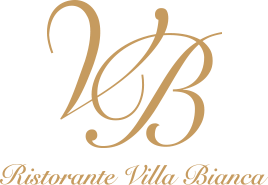 vb_logo-footer2016